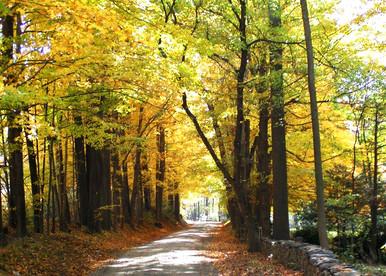 fall2005 030.jpg