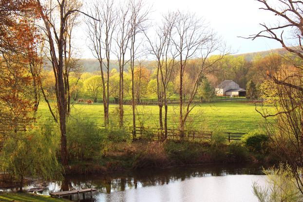 Barn and pond.jpg