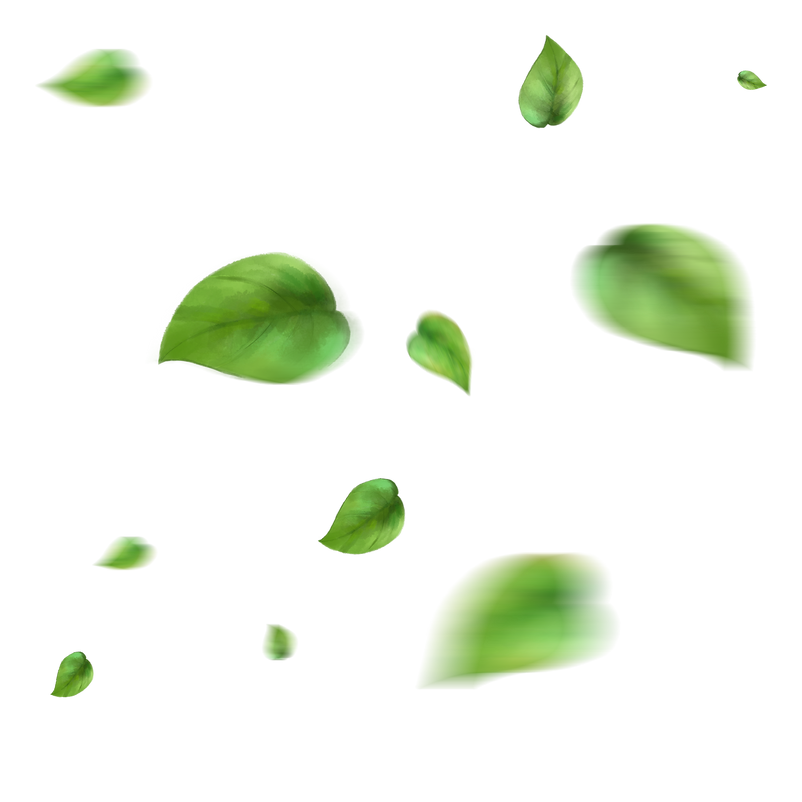 —Pngtree—floating_yellow_green_leave