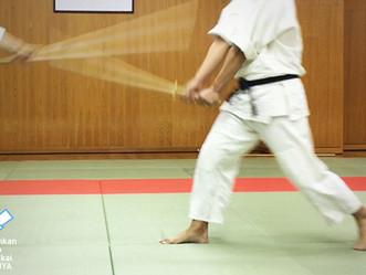 剣杖ができると体術にどう役立つのか -後編