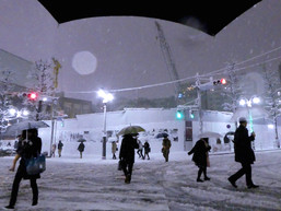 雪道を歩いたり雪かきをするのは、いいトレーニングなのかもしれない