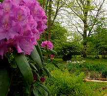Spurgeon-Garden.png
