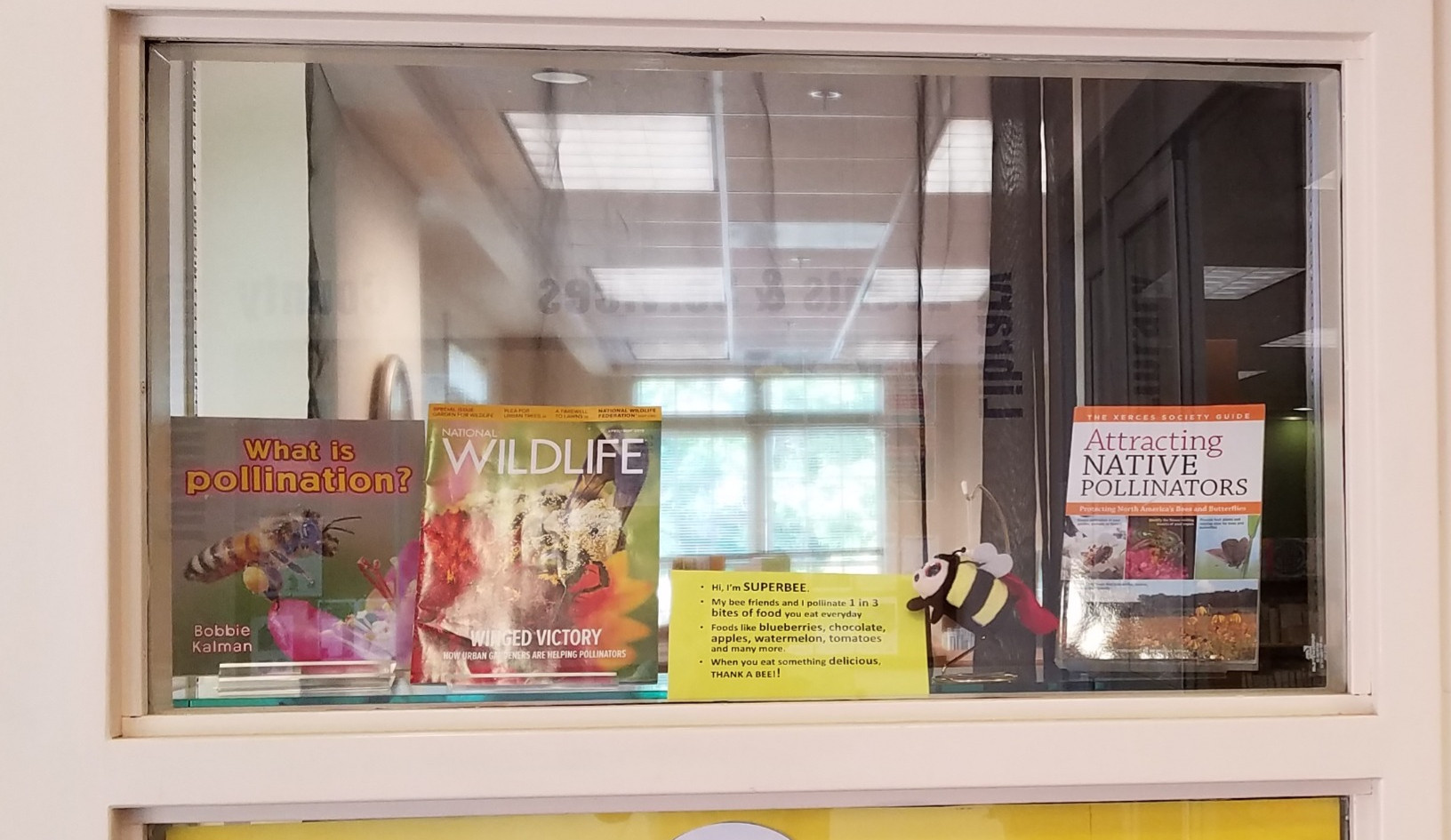 Pollinator Week Display