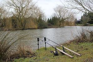 Perch fishing at Westerly Lake York.