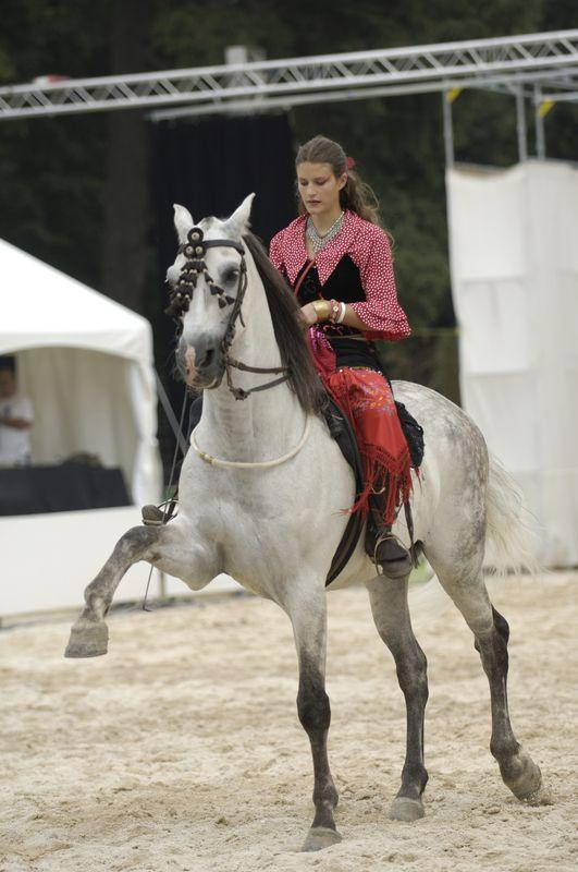 Ecole-equitation-13