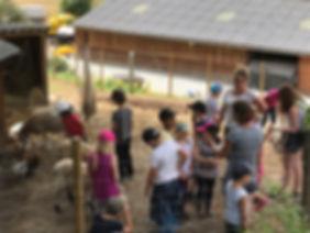 centre aéré etferme pédagogique