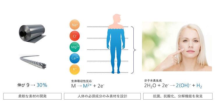 Magnesium%20Micro%20Carrier%20210228%20J