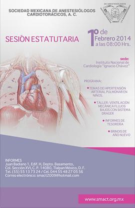 Sesion_estatutaria_2014.png