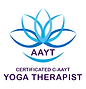 AAYT Certificated YT Logo.png