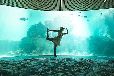 daydream-island-yoga.jpg