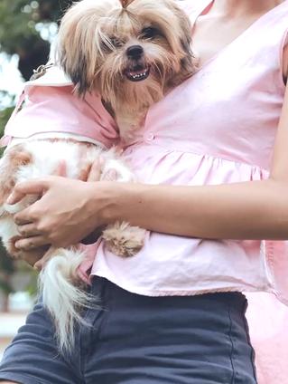 DIY เสื้อเชิ้ตตัวเก่า เป็นชุดคู่ใส่กับน้องหมา