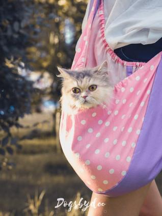 How to เย็บกระเป๋าใส่สัตว์เลี้ยง Sling Bag
