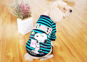 How To ขายเสื้อผ้าสัตว์เลี้ยง รวมเว็บชุดหมาแมวสวยๆ ให้สั่ง Pre Order มาขาย