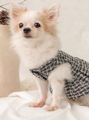 Preview : Hello Little Brown เรียนตัดชุดคู่สำหรับเจ้าของกับน้องหมา