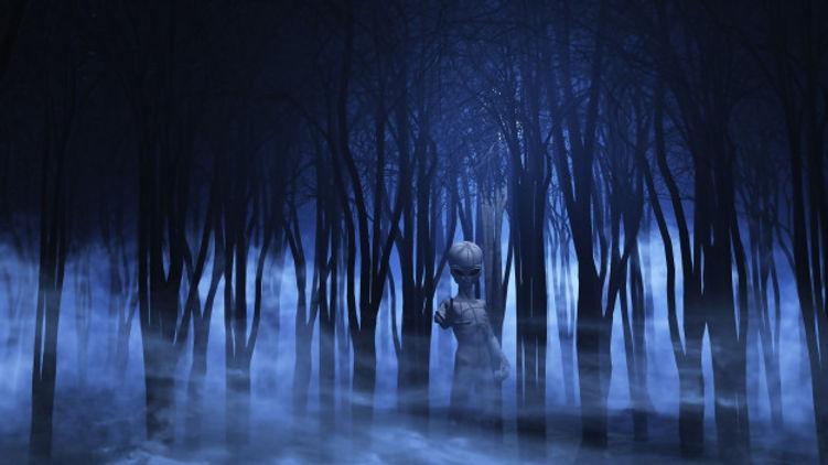 3d-alien-foggy-forest_1048-8843.jpg