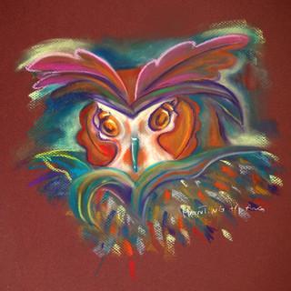 owl(big)+f.jpg