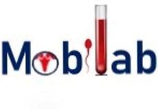 logo2big.jpg