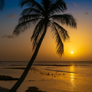 Dolly Beach Sunset - Mustique