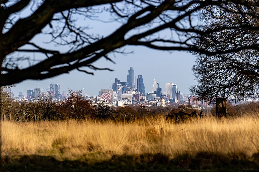 London Vista from Richmond Park