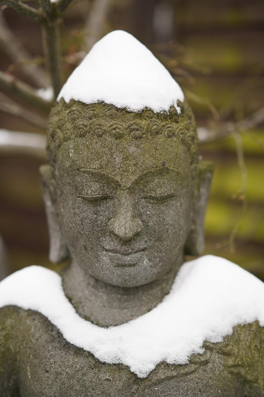 Buddha in Winter
