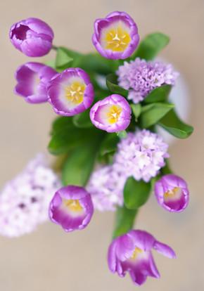 Opaline Tulips & Lilacs