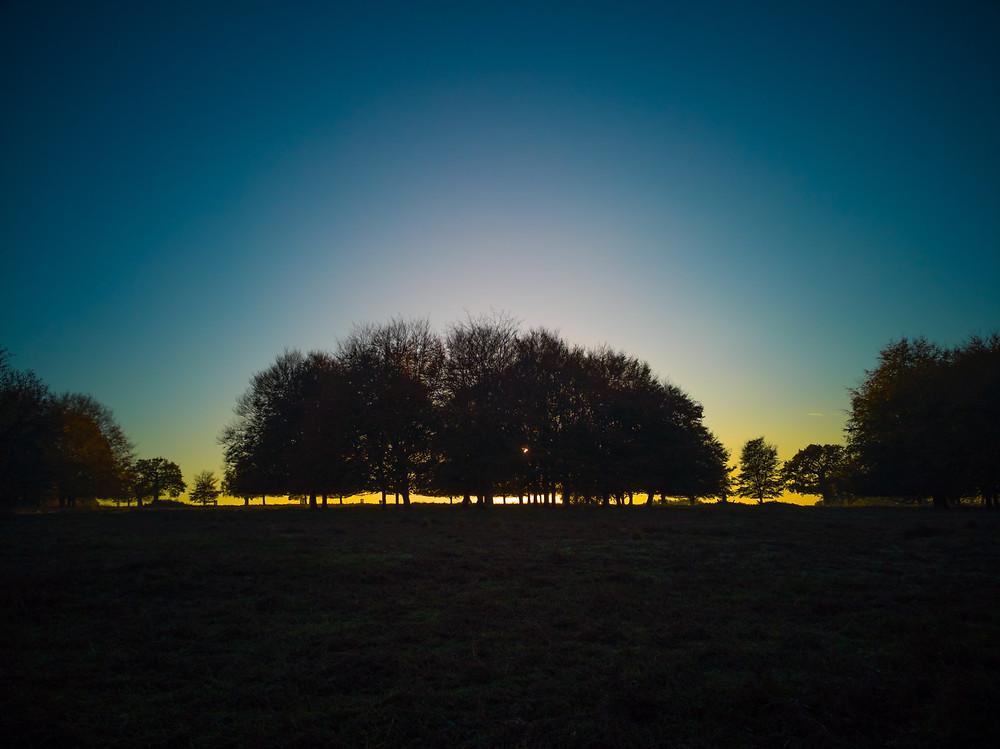 Sun sets low