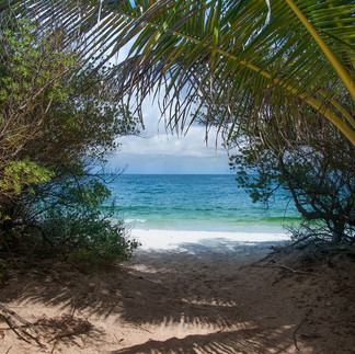 Classic View through to Macaroni Beach - Mustique