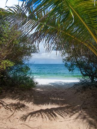 Travel - Caribbean Islands