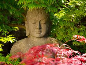 Lockdown Portrait of Buddha