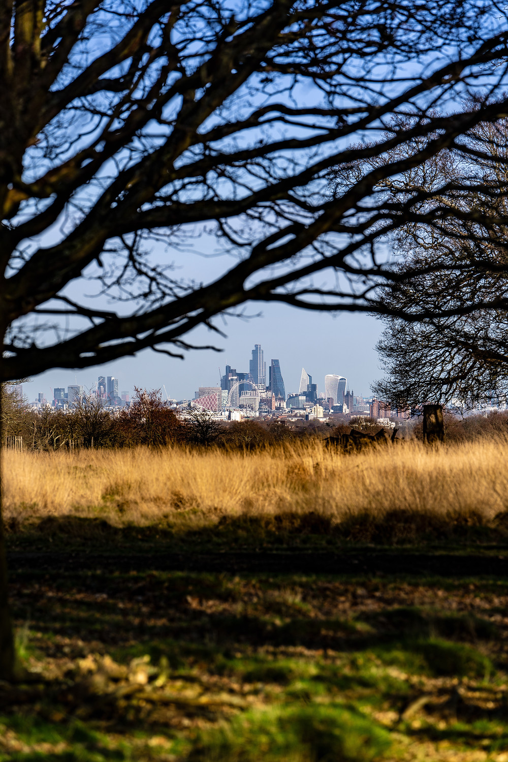 Looking towards the City from King Henry's Mound