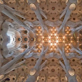 Ceiling - Sagrada Família