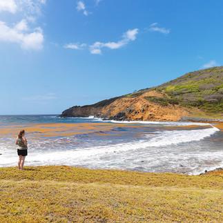 Rutland Bay - Mustique