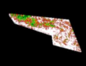 Pasi_Canopy_per_sqm_map.png