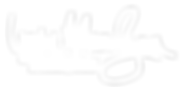 LNR_LogoWhiteNoBackground01.png