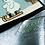 Thumbnail: Maulwurf rodelt