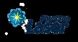 Laser Plumbing Logo_CMYK Print_Hi Res no