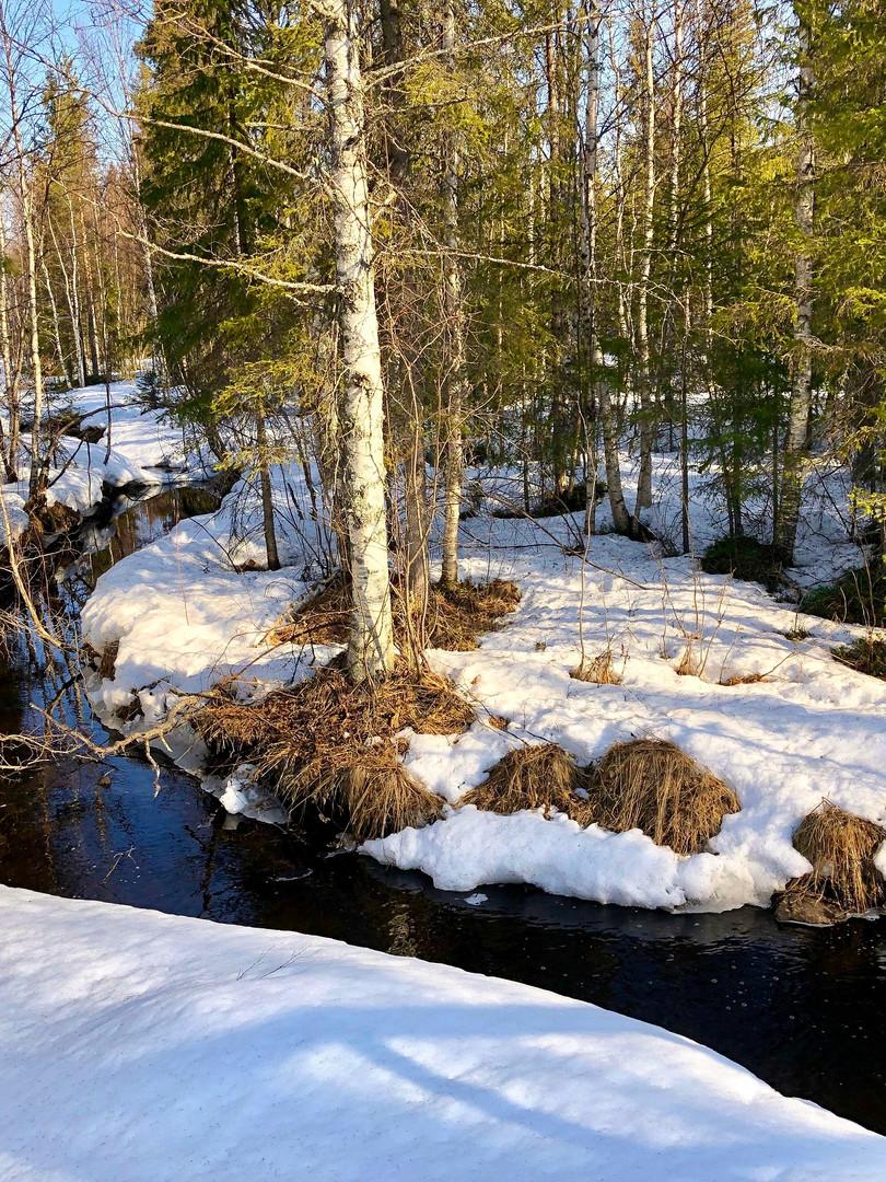 Ruisseau romantique