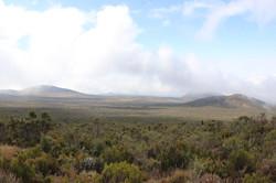 La lande du Kilimandjaro