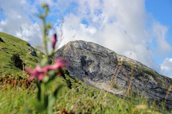 Grande Moucherolle (2284 m)