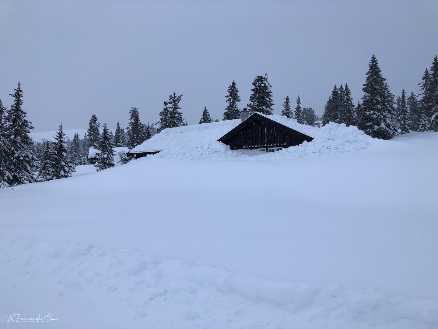 On a rarement vu autant de neige