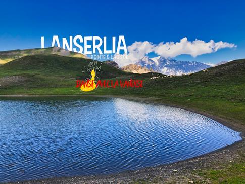Lanserlia.png