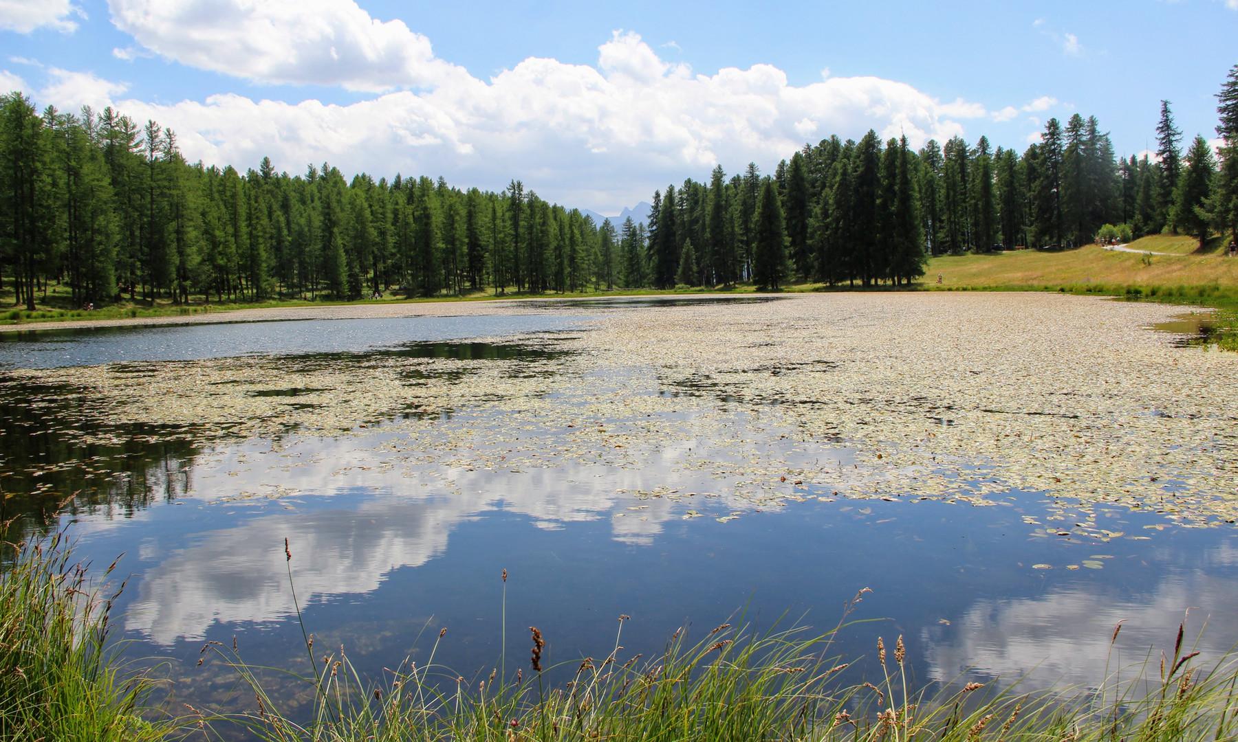 Lac de la Roue (1847 m)