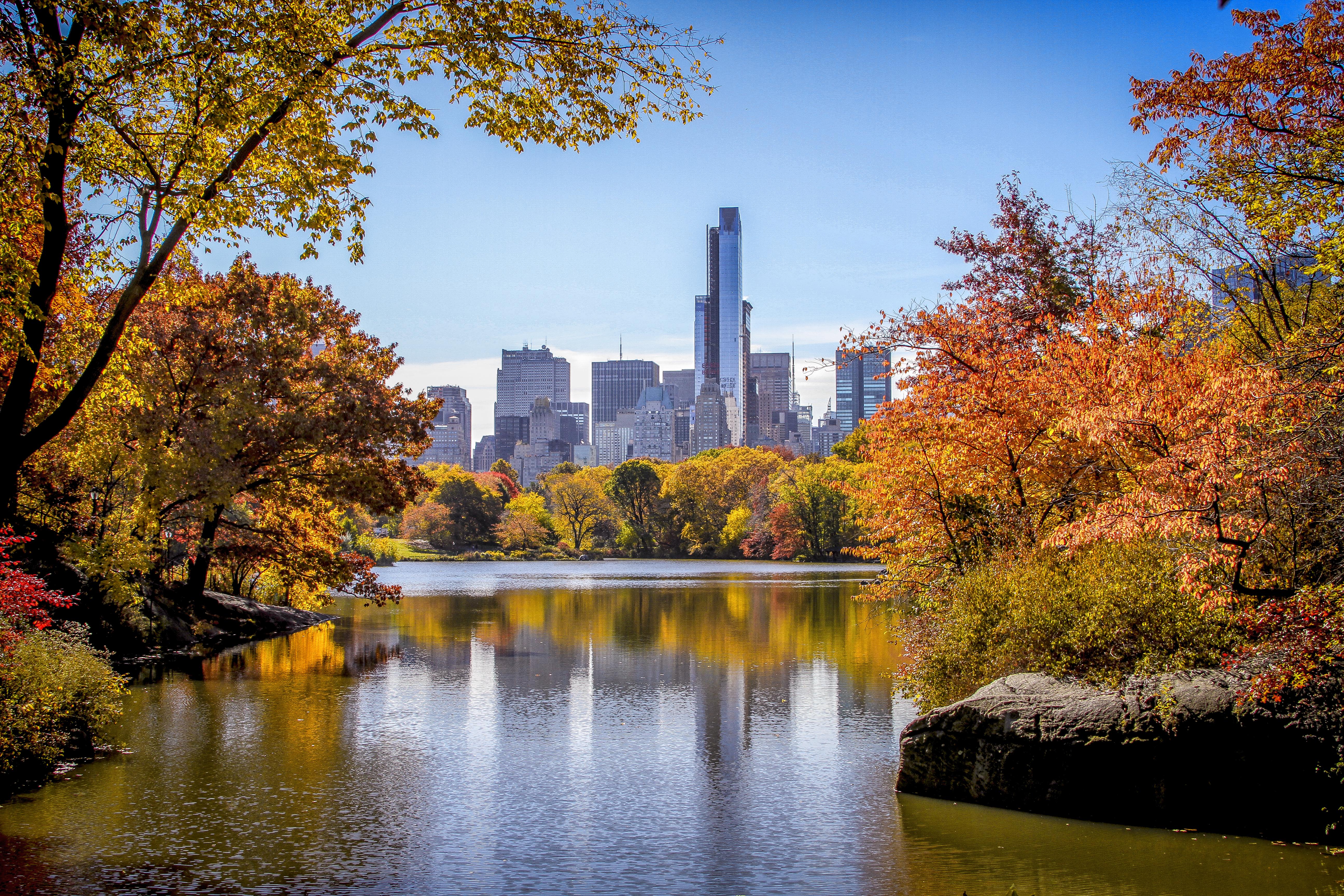Central Park< New York