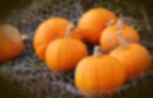 pumpkin-1679827_1920.jpg