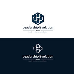 Leadership-Evolution-Group-4.jpg