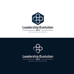 Leadership-Evolution-Group-4.jpg