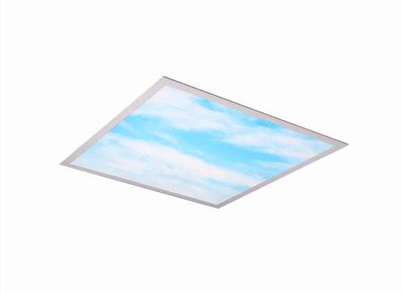 DPBS™ - Blue Sky Panel