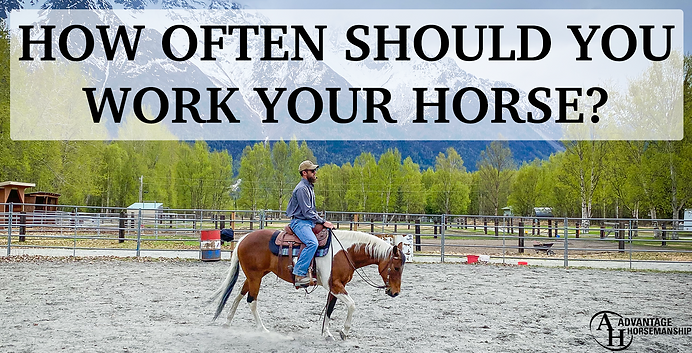 How often should you work your horse.png