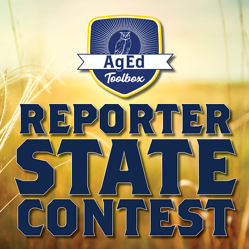 State Reporter Contest Guide