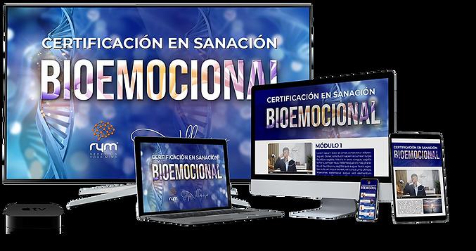 programa_sanación_bioemocional.png